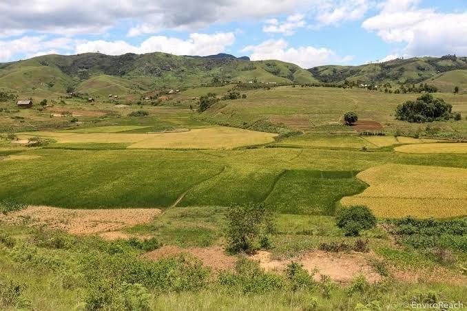 'Vishoka' Hawatambui Sheria za Ardhi Nchini Tanzania