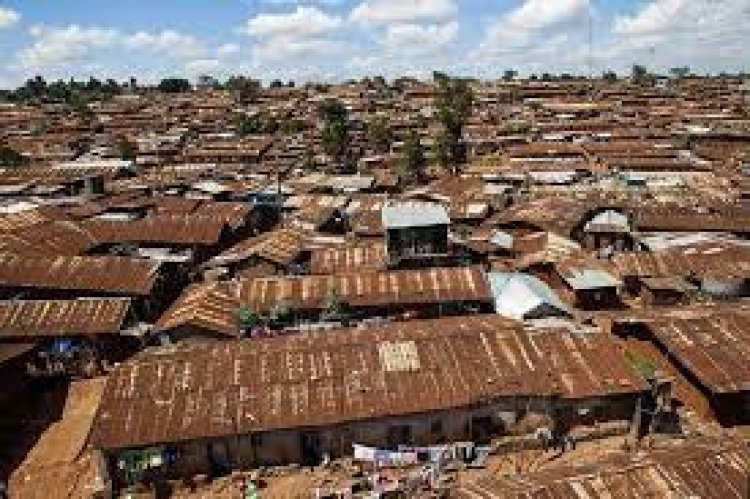 Statistics: How Many Kenyans are Homeowners, How Many Stay in Rental Apartments and in Slums