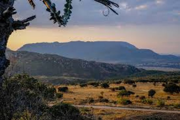 How One Can Acquire Land in Tanzania