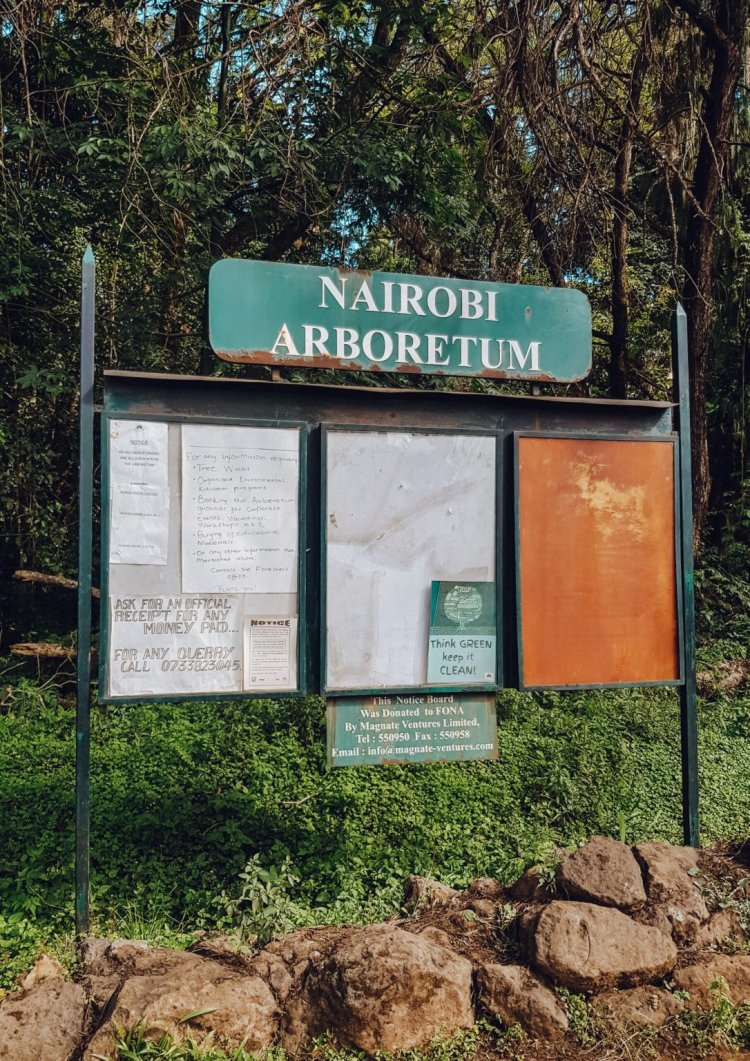 You Need KSh 65 as Entry Fee to the Nairobi Arboretum
